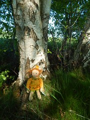 Prinzessin Penelope_12052016_an Birke fern (Puppenhandwerk Prsch) Tags: handmadeclothdoll clothdoll organicdoll waldorfdoll steinerdoll prinzessinpenelope danieladrescher urachhaus companiondoll dollmaker dollmaking