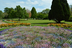 St. Nicholas' Park, Warwick (Tony Worrall) Tags: england county town leicestershire uk update place location visit area attraction open stream tour country warwick warwickshire unitedkingdom mid midlands centre central park nature beauty outside colours bloom flowers