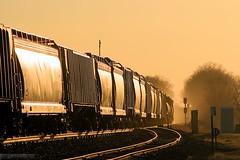 Sunset on the Rock Island (Jeff Carlson_82) Tags: railroad sunset up train ks grain railway kansas unionpacific siding signal railfan glint manifest uprr paxico