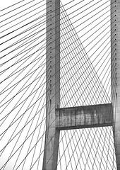 Bridge Cables (gordeau) Tags: bridge bw bc delta cables gordon ashby alexfraser unanimous gordeau