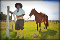 Seu Cirilo Silva (Eduardo Amorim) Tags: brazil horses horse southamerica brasil criollo caballo cheval caballos cavalos pferde cavalli cavallo cavalo gauchos pferd riograndedosul pampa campanha brsil chevaux gaucho cavall  amricadosul fronteira gacho amriquedusud  gachos  sudamrica suramrica amricadelsur sdamerika crioulo caballoscriollos criollos  pilchasgauchas americadelsud pilcha dompedrito crioulos cavalocrioulo americameridionale caballocriollo pilchasgachas eduardoamorim cavaloscrioulos pilchagacha pilchagaucha