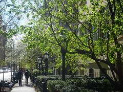 201504116 New York City Chelsea (taigatrommelchen) Tags: street city nyc newyorkcity urban usa ny newyork building chelsea manhattan 20150417