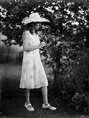 Woman (Nagy Krisztian) Tags: woman negative wetplate collodion