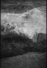 looking down, cliffside, surf, motion, Burnt Head, Monhegan, Maine, Bencini Koroll 24S, Fomapan 200, Ilford Ilfosol 3 Developer, early June 2016 (steve aimone) Tags: lookingdown cliffs rocks surf ocean atlanticocean burnthead monhegan monheganisland maine monochrome monochromatic mediumformat blackandwhite 120 film halfframe bencinikoroll24s fomapan200 ilfordilfosol3developer