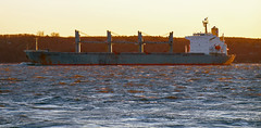 Elena Topic (Nicober!!!) Tags: quebec canada fleuve stlaurent stlawrence river ship general cargo elena topic marfin