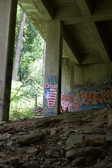 Hey Hey, 'Murica Everyday (pete.crain89) Tags: philadelphia philly wissahickon bridge street art grafitti america usa marijuana