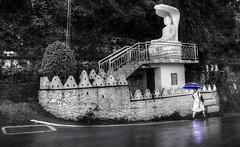 Snake vs umbrella (Saint-Exupery) Tags: leica bw candid bn srilanka robado