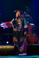 Mme Wu Labao, vocal (Miao), Entre Ciel et Terre (lyli12) Tags: concert spectacle artiste musicien france chine scne instrumentdemusique chanteur nikon d7000