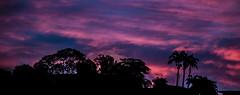 puesta de sol en la ciudad (fedelea1962) Tags: sunset cielo caracas venezuela tropico tropic