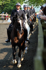 Entering the Arena (meniscuslens) Tags: horse hounds heroes trust buckinghamshire police mounted