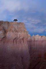 Alone ... on the Hoodoos (ken.krach (kjkmep)) Tags: brycecanyonnationalpark