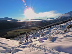 Breaking the trail (flashmick) Tags: bruce snow winter august canterburynz canterbury southisland newzealand