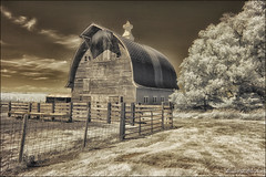 Rustic Nebraska (danielgweidner) Tags: architecture convertedir country eos50d farm ir infrared landscape nebraska rural rustic bucolic pastoral barn fence agriculture farmland peaceful summer outside usa