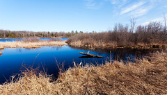 Early Spring Withey Lake (hz536n/George Thomas) Tags: sky copyright lake water canon spring michigan canon5d upnorth 2015 withey ef1740mmf4lusm ogemaw cs5