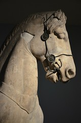 Fragmentary horse from the colossal four-horses chariot group which topped the podium of the Mausoleum at Halicarnassus, Mausoleum at Halicarnassus, around 350 BC, British Museum (Following Hadrian) Tags: mausoleum bodrum halicarnassus caria halicarnassos maulossos