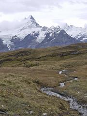 141008214255 () Tags: switzerland first grindelwald interlaken jungfrau  2014 siwss 10 bachalpsee   firstflyer   trottibikeride