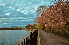 Central Park-The Reservoir, 04.26.15 (gigi_nyc) Tags: nyc newyorkcity sunset spring centralpark goldenhour nycskyline thereservoir