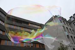 Seifenblasenfabrik Bubblebo Seifenblasenshow beim Tag der offenen Tür im Bundesministerium für Landwirtschaft 9