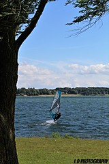 IMG_0759 (lesleydoubleday) Tags: rutland rutlandwater windsurfers