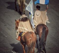 Desfile gaucho,  Uruguay (gustavobarral) Tags: uruguay calle pareja gaucho desfilando