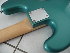P1110743 (janoutech) Tags: warmoth fretless sage green
