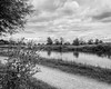 River Cam (lewis_brittain) Tags: nikon nikond5300 1855 cambridge river rivercam blackandwhite f16 d5300 greyscale