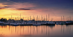 Summer in the city - Small Marina (Stefan Sellmer) Tags: balticcoast balticsea germany kiel kielfjord schleswigholstein water city color colorful evening longexposure summer sunset deutschland de