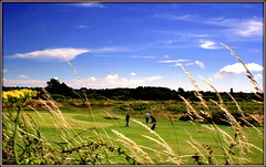 A round of golf (* RICHARD M (Over 5 million views)) Tags: southportmunicipalgolflinks golfers summer summertime july golfing golflinks golfcourse southport sefton merseyside scapes peaceandquiet happiness tranquility enjoyment golftrollies playingaround gameon