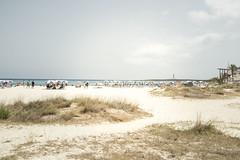 201607_Urlaub_Menorca-158 (www.arternative-design.com) Tags: balearen balearios balerischeinseln ciutadella d810 espana insel leuchtturm mahon mao ma meer menorca nikon nikond810 palmen sommer sonne sonnenuntergang spain spanien strand sun urlaub beach lighthouse summer sunset