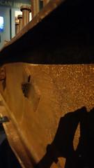 W Flange 03390 (Omar Omar) Tags: ronaldreaganpresidentiallibrary ronaldreaganpresidentiallibraryandmuseum museum muse museo simivalley simivalleyca simivalleycalifornia california californie usa usofa usanda lamerique etatsunis usono gringolandia ronladreagan ronaldo rolando presidentoftheusa prezidantodeusono presidentegringo 911 september11 fdny343 wflange wideflangebeam fdny