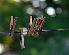 Wooden Clothes Pins (Cooling Down Again Yay!!!) Tags: theflickrlounge anythingwooden clothespins