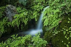 IMG_8465 (petrosli) Tags: water nature canon eos500d eos