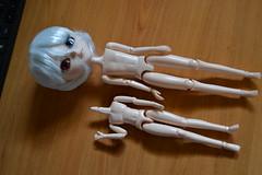 Comparaison corps stock isul / obitsu 21 cm male (DollEmiou) Tags: white male eye cat gris beige 21 retro cm enjoy memory custom lupin isul obitsu