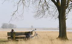 Dutch Discovery (andzwe) Tags: drenthe dutch dutchlandscape nederland nederlands netherlands nederlandslandschap panasonicdmcgh4 panasoniclumixdmcgh4 woman verrekijker landschap boom fiets bike bicycle bench looking discovery binoculars fieldglasses dutchdiscovery dwingelderveld heide heather moor documentair elegant verhaalvertelling sfeervol birdspotting vogelsspotten bank landscape rustgevend natuur nature © ©andzwe drente simplicity highkey david davidsplassen