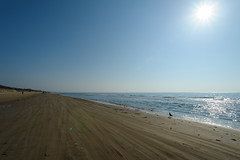 DS7_7717.jpg (d3_plus) Tags: street sea sky beach nature japan walking spring scenery bokeh outdoor fine wideangle daily  streetphoto gw      dailyphoto kanazawa  thesedays ishikawa superwideangle    fineday    tamron1735   a05   tamronspaf1735mmf284dildasphericalif  tamronspaf1735mmf284dildaspherical d700    nikond700 tamronspaf1735mmf284dild  chirihamanagisadriveway tamronspaf1735mmf284  nikonfxshowcase