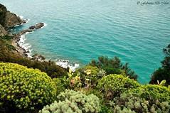 Calabria - la scogliera di Caminia (fabrizio64) Tags: mediterraneo italia roccia calabria paesaggio catanzaro onde macchiamediterranea golfodisquillace