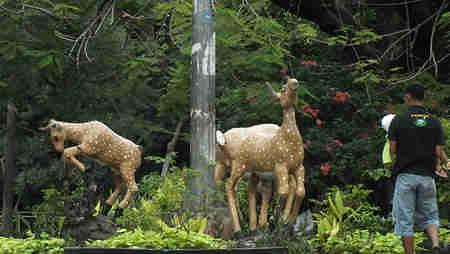 Patung Kijang di Taman Kencana Bogor