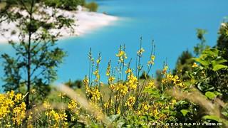 Il giallo del tesoro turchese