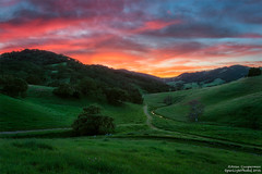 Springtime (Aron Cooperman) Tags: california sunset green field northerncalifornia landscape countryside spring outdoor cal rollinghills pathway springtime morganhill wbpa nikond800 aroncooperman openlightphoto april2016 escaype