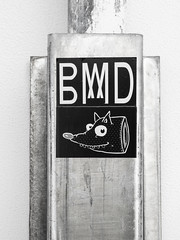 BMD'd (Steve Taylor (Photography)) Tags: newzealand blackandwhite streetart art monochrome strange metal contrast fun graffiti pig weird crazy cool sticker head teeth nelson monotone odd nz southisland hog aluminium bmd beheaded