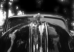 Now that's a hood !! (phunnyfotos) Tags: phunnyfotos australia victoria vic gippsland warragul car vintage classiccar mono bw monotone hood bonnet pontiac silverstreak 1948 1940s nikon d750 nikond750 windscreen front badge