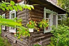 Haus im Dorf (sibwarden) Tags: blume russischdeutsche russland russia altay