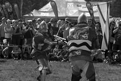Wales 3 (SaySandra) Tags: edmonton heritage days multicultural festival
