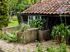 Red House Garden (Ian_Matthews) Tags: historicbuildings redhouse panasonic