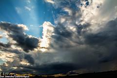 August 14 2016 Amazing Structured Storms (Dan's Storm Photos & Photography) Tags: skyscape skyscapes sky shelfcloud severethunderstorm supercell shelf supercellthunderstorm storms updraft updrafts cumulonimbus clouds cumulus crepuscular crepuscularrays cloud cumulusclouds gustfront gustfronts anvil anvils sunset sunsets sunsetstorm sun sunrays mammatus mammatusclouds mammatusdisplay mammatussunset rain rainshaft rainshafts scud landscape landscapes weather nature convection