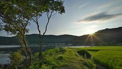 (tyodai) Tags: japan shiga   summer   yogo     7 ilce7 super wideheliar 15mm f45 aspherical iii