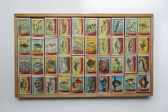 Simon de Wit, Fish series 1963 (Arne Kuilman) Tags: simondewit supermarkt supermarket luciferdoosjes lucifers serie vissen fish 1963 netherlands nederland sparen verzamelen doosjes matchbox matchboxes art collectthemall pokemonavantlalettre neontetra