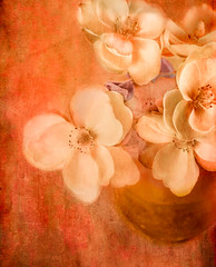 Vivid Floral (ocanannain) Tags: stilllife bunchofflowers closeup flowers highangleview tabletop tabletopphotography texture textured textures vase vivid dramatic painterly cmwd cmwdorange orange