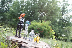 Looking at the vastness (Loysnuva) Tags: lego moc ccbs technic system photo trip bionifigs