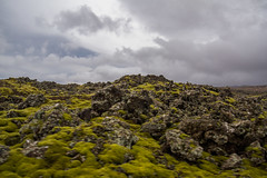 Berserkjahraun 40 (raelala) Tags: 2016 berserkjahraun snaefellsnes snaefellsnespeninsula canon1785mm crater europe europeantravel iceland icelanding2016 lava lavafield photographybyrachelgreene ringroad roadtrip scandinavia thatlalagirl thatlalagirlphotography thatlalagirlcom travel